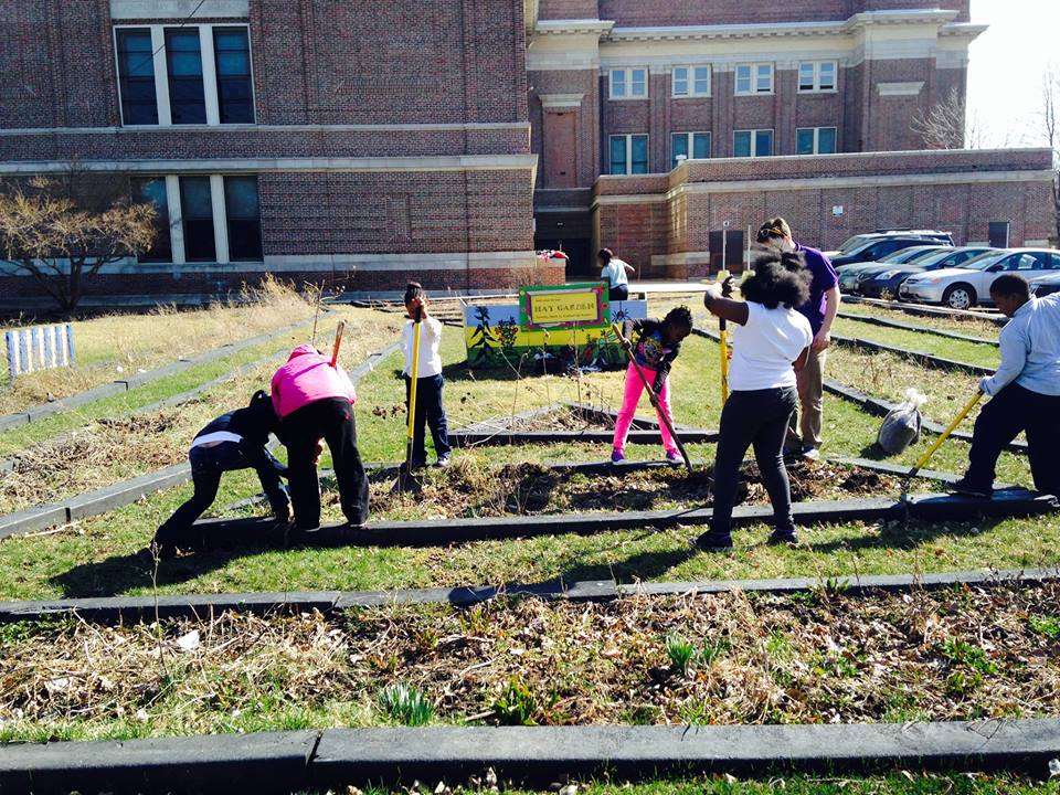 A group of students tilling various sections of a garden with a triangular outline.