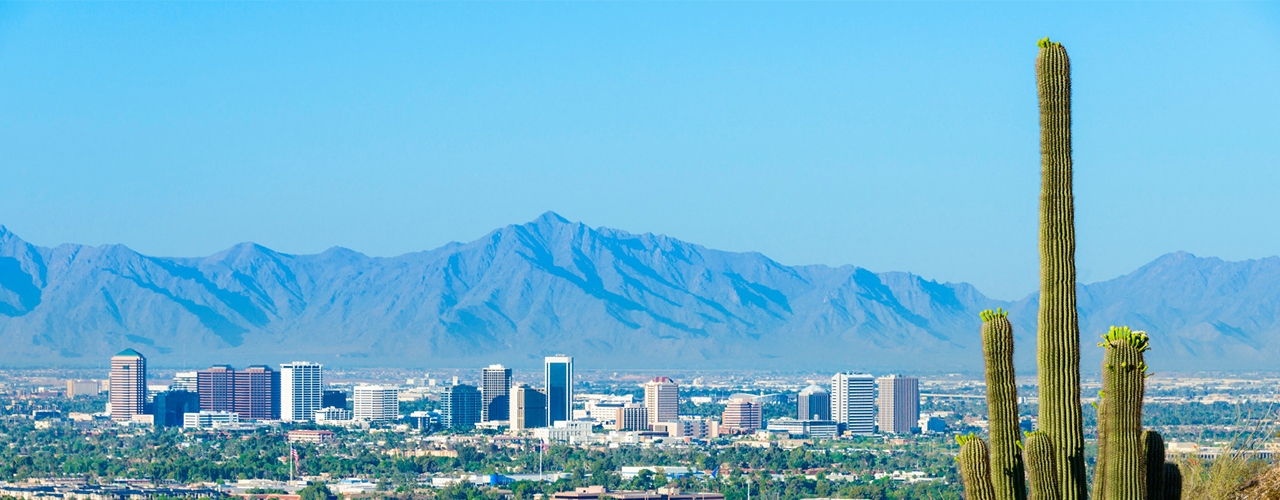 A desert landscape showing a large cactus, the city of Phoenix, and mountains in the background.