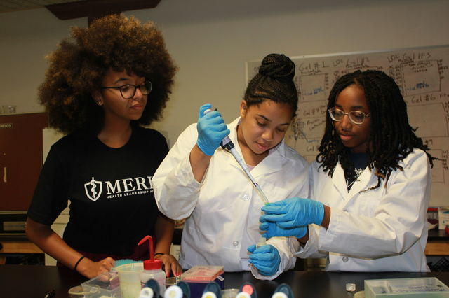 The Road to a Healthy Education May Run Through Medical School