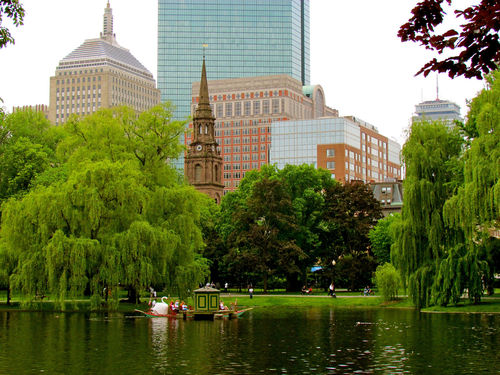 Boston Skyline by Water