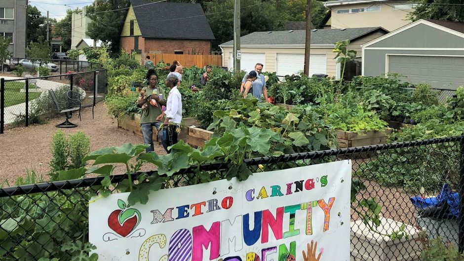 People gardening in the Metro Caring community garden