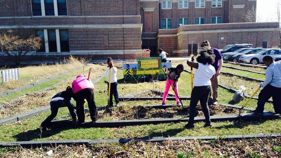 Students create a garden in their school's yard
