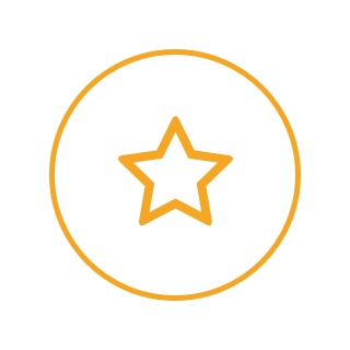 A circular icon with a white background, a yellow border, and a star.