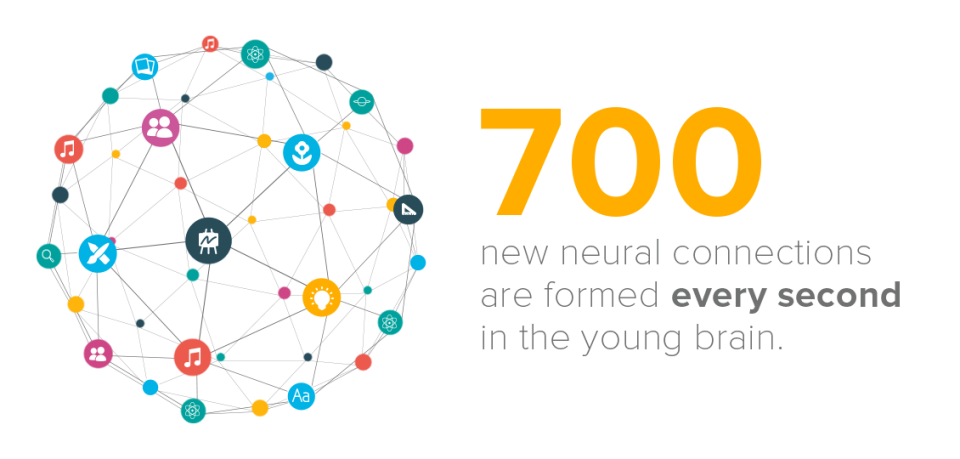 700 Neural Connections in the Brain Every Second.