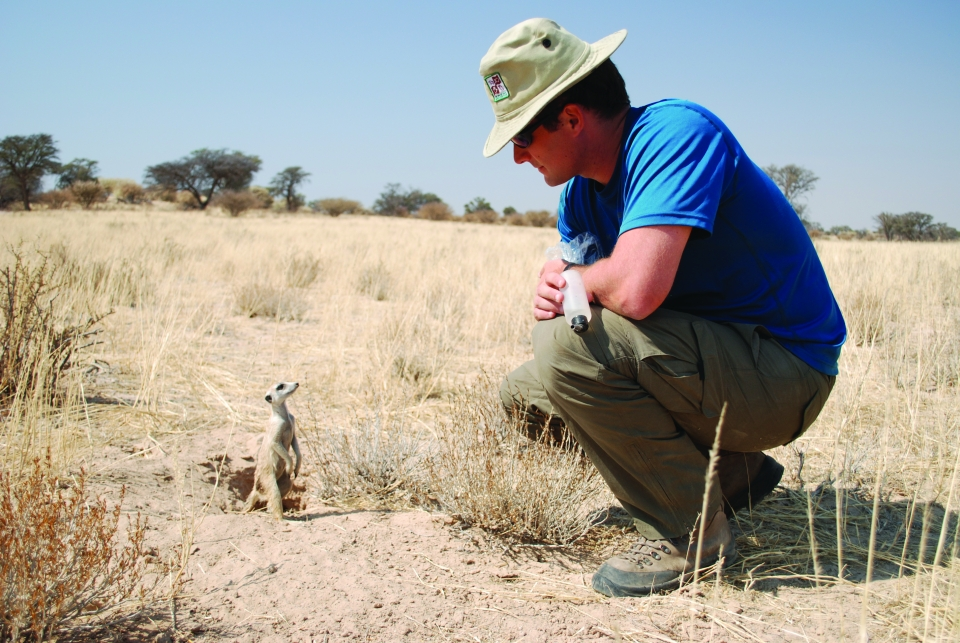 A young adult male in long pants, a blue t-shirt, and a safari hat crouches next to a small meerkat perched on its hind legs, with a large open field and blue sky in the background.