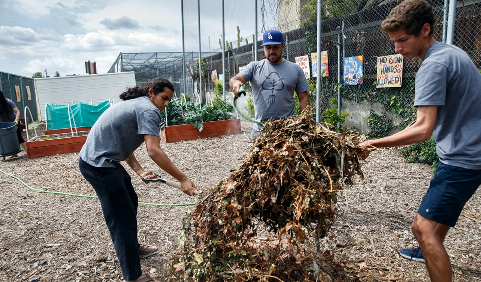 Three high school boys working on a pile of organic debris in a sunny lot covered in mulch, next to chain link fences and various plant boxes.