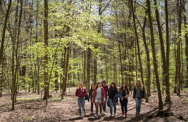 A group of students walk through a forest in Germany.