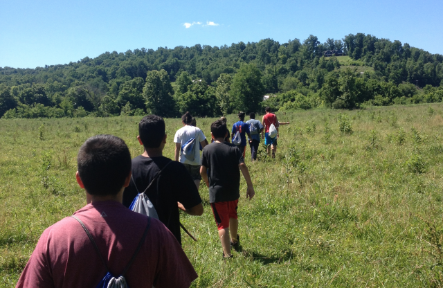 A group of teenage boys walking through a field of tall grass and plants towards a large tree covered hill under a clear blue sky.