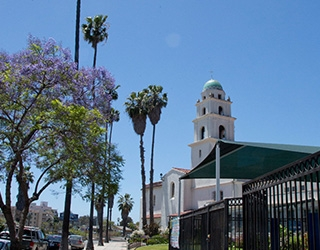 A tall, white building is visible in the background, with palm trees and blossoming green trees are in the foreground, with an urban landscape.