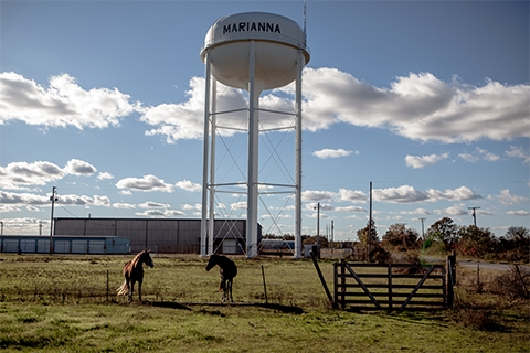 "A large white water tower reading, ""Marianna;"" in the foreground is a farm and two horses standing next to each other by a thin fence."