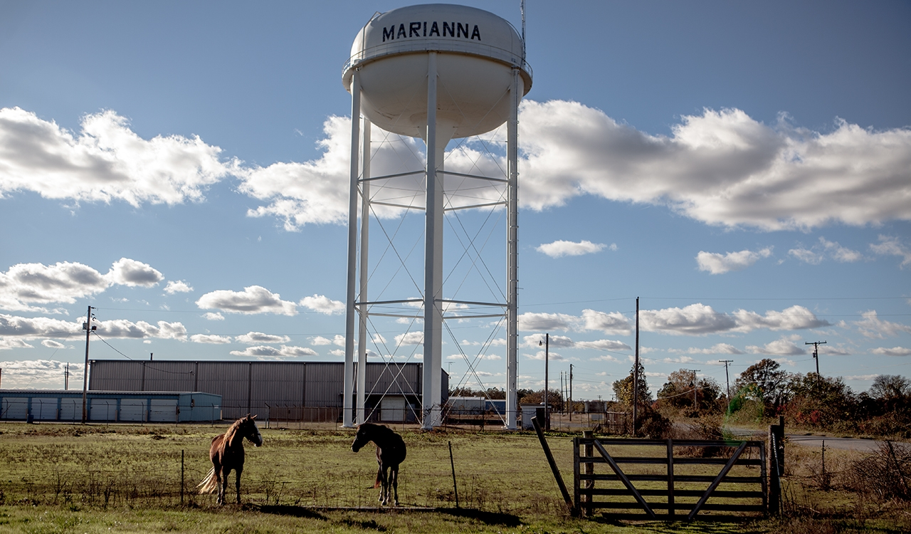 A white water tower, with the word Marianna on it, standing in a field with two horses, in front of some industrial buildings and next to a road.