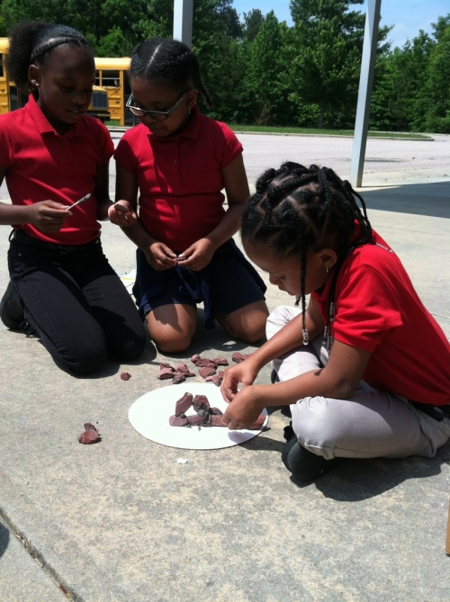 Meghan Coulbourne's students participate in the Engineering is Elementary program.