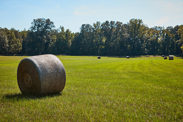A bale of hay in a wide open field