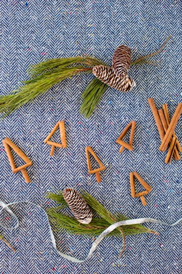 cinnamon sticks project classroom